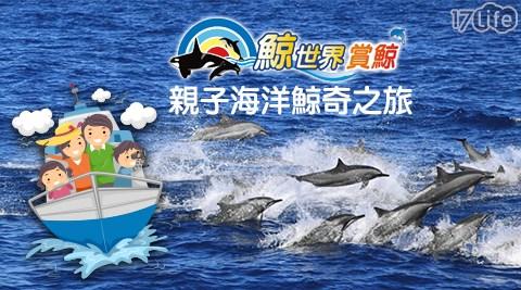 鯨世界賞鯨/賞鯨/海豚/浪花/海洋/親子/暑假