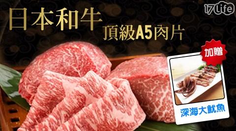 食材/生鮮/進口/生凍深海魷魚/日本頂級和牛霜降厚切肉片/海陸/BBQ/烤肉/中秋節/和牛