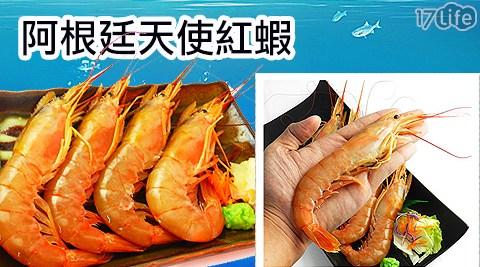 生鮮/海鮮/水產/野生深海阿根廷天使紅蝦/烤蝦/烤箱/火鍋/鍋物/食材/進口/義大利麵/蛋白質