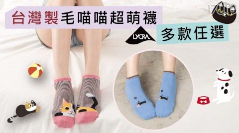 舒適/透氣/襪/短襪/中長襪/棉襪/春裝