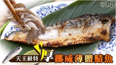 天王級特厚挪威薄鹽鯖魚