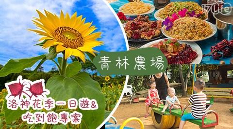 青林農場-洛神花季一日遊&洛神風味餐吃到飽專案