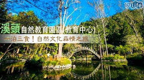 溪頭自然教育園區(教育中心)/溪頭/教育中心/南投/妖怪村/溪頭