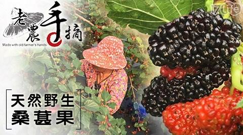 老農手摘/水果/天然/野生/桑葚/果汁/冰品/採收/冰沙/點心/甜點/季節/限定/限量/蛋糕/花青素/養生/莓果