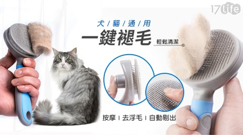 貓/狗/毛小孩/寵物/清除/清潔/整理/毛刷/刷子/刷具/梳毛刷/梳毛