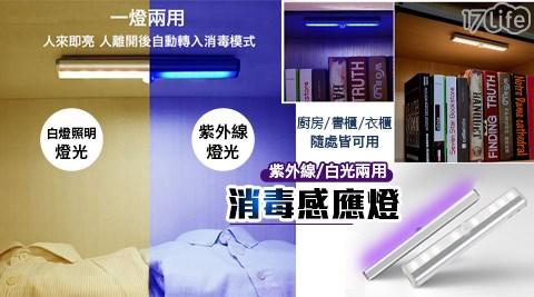 感應燈/感應/燈/LED/紫外線/除菌/智能紫外線除菌LED感應燈