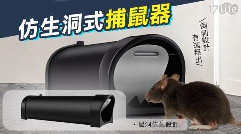 鼠洞/全自動/捕鼠器老鼠籠/老鼠/老鼠籠