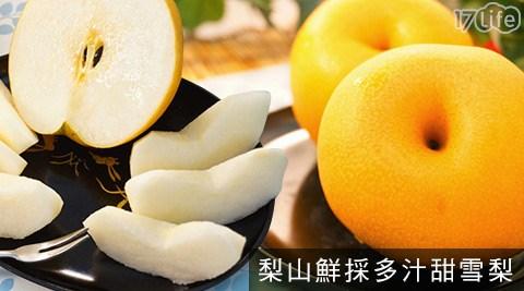 梨山現採新鮮水梨,果型碩大渾圓,個頭飽滿。果汁含量豐富水分充足,細緻香甜的口感,難以抵擋的清甜滋味!