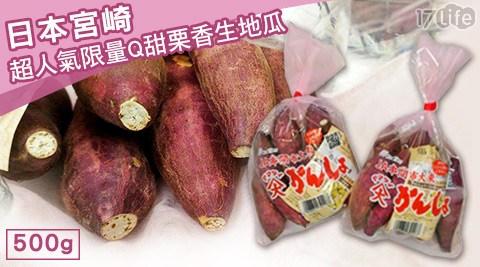 平均每包最低只要129元起(含運)即可享有日本宮崎超人氣限量Q甜栗香生地瓜(500g)2包/5包/10包/15包。