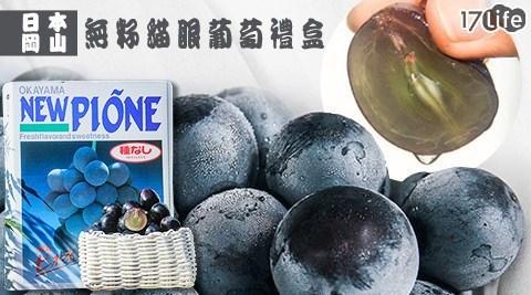直接空運來台!日本最珍貴的三大果物之一,甜度高達16~21度,果粒巨大呈黑紫色, 無敵魅力無法擋!