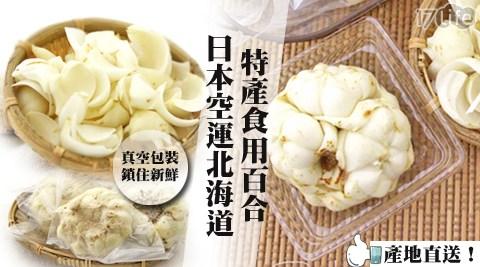 產地直送!日本空運北海道特產食用百合