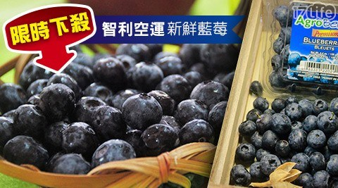 水果/藍莓/沙拉/優格/輕食/甜點/蛋糕/下午茶/花青素/智利/進口/空運/果昔/奶昔