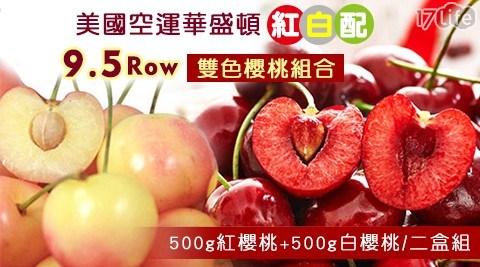 美國空運華盛頓「紅白配」9.5Row雙色櫻桃組合(500g紅櫻桃+50