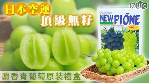 【NEW PIONE】無籽麝香蜜青葡萄禮盒