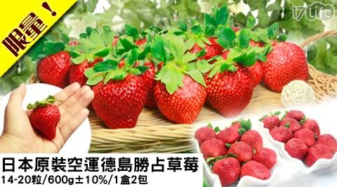 水果/禮盒/草莓/限量/冬季/日本/原裝/空運/季節/德島/勝占/年節/送禮/贈禮/過年