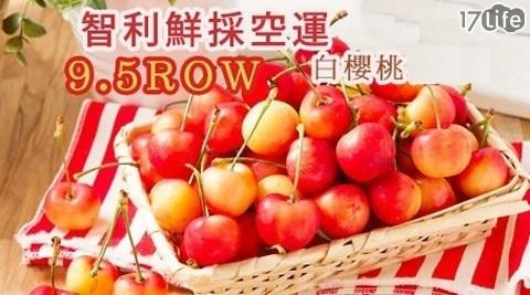 水果/智利/空運/9.5ROW/白櫻桃/進口/腸胃/消化/鐵