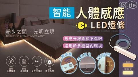 LED防水燈條/防水燈條/LED/LED燈