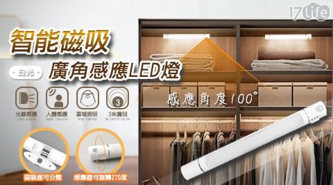 感應燈/檯燈/磁吸燈/手電筒/LED/照明燈