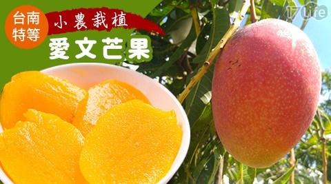 水果/果汁/特級/甜點/芒果/冰品/愛文/台南/玉井