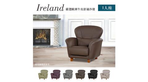 IHouse-愛爾蘭 嚴選歐洲牛皮舒適沙發 1人座