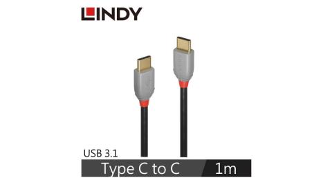 LINDY林帝 USB3.1 GEN 2 TYPE-C 公TO公 傳輸線+PD智能電流晶片 1M
