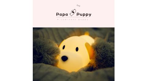 papa puppy 呆呆汪 小狗伴睡燈/夜燈/造型燈/觸控燈 USB充電 禮物