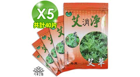 【心海文物】艾草清涼貼布5包40片(SH-0011)