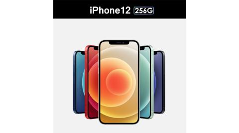 【Apple 蘋果】2020 iPhone 12 256G 6.1吋 智慧型手機 (耳機+無線充電板+3in1充電線+玻璃貼+空壓殼)