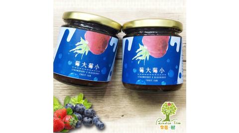 《樂園.樹》莓大莓小-無農藥草莓藍莓雙果醬(共兩瓶)