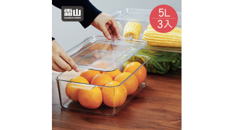 【日本霜山】廚房冰箱PET蔬果生鮮收納盒(附蓋)-5L-3入