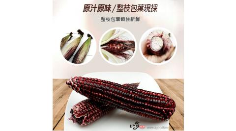 黑寶花青素甜糯玉米(3公斤±10%/份)x2份