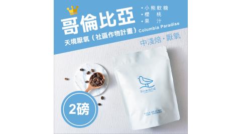 【江鳥咖啡 RiverBird】哥倫比亞- 天境厭氧 社區作物計畫《兩磅》