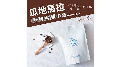 【江鳥咖啡 RiverBird】瓜地馬拉 薇薇特南果小農 半磅