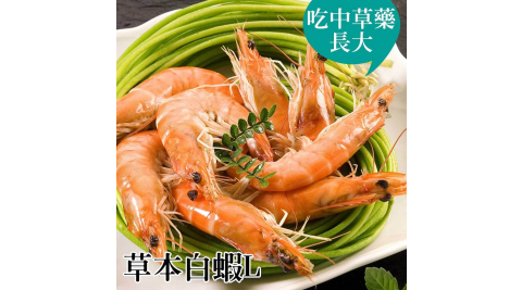 《台江漁人港》草本白蝦(L)(半斤/包,共二包)