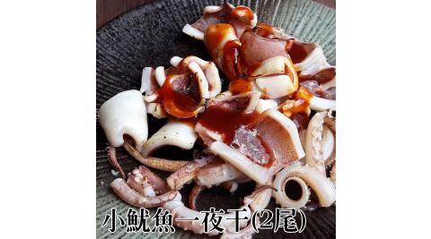 《台江漁人港》小魷魚一夜干(250-300g/2尾/包,共二包)