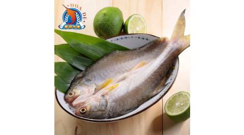 《東港華得》午仔魚一夜干(150-200g/尾,共5尾)