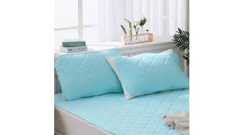 LAMINA 枕用 天絲涼感環保紗保潔墊(2入)