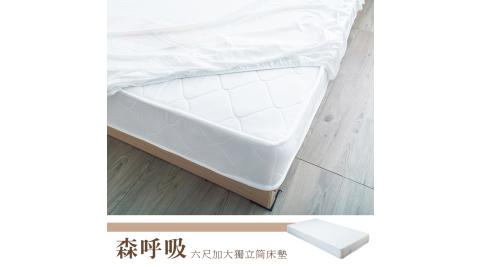 【dayneeds】預購 Kailisi 卡莉絲名床 6尺雙人加大獨立筒床墊