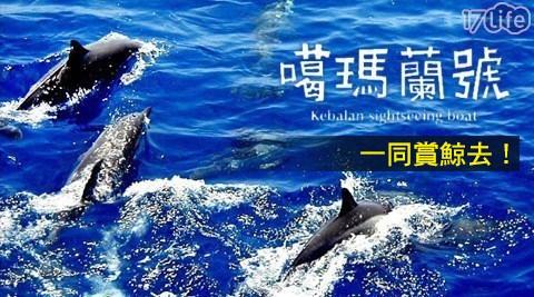 噶瑪蘭賞鯨-宜蘭頭城龜山島不分平假日賞鯨趣