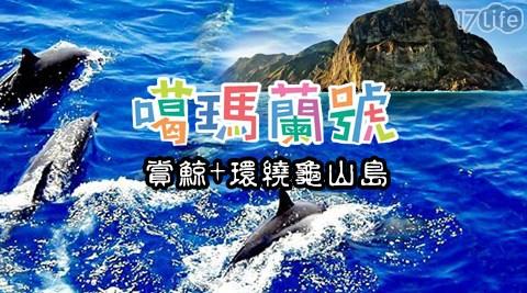 不分平假日皆可使用!乘船逐浪尋鯨豚,專業導覽人員解說,讓您飽覽龜山島的神秘風采