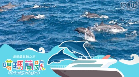 噶瑪蘭賞鯨/噶瑪蘭/賞鯨/假日不加價/親子/全家/龜山島/生態/自然/大海