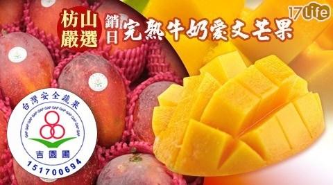 【枋山嚴選】吉園圃認證銷日完熟牛奶愛文芒果(9~12粒裝,2.5kg)