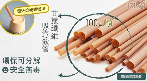 甘蔗/斜口/環保/甘蔗吸管/吸管/環保吸管