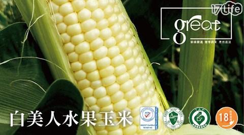 平均最低只要 18 元起 (含運) 即可享有(A)【鮮綠農產】18度高甜度白美人水果玉米 20支/組(B)【鮮綠農產】18度高甜度白美人水果玉米 40支/組(C)【鮮綠農產】18度高甜度白美人水果玉米 80支/組