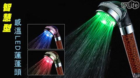 智慧型感溫LED蓮蓬頭/蓮蓬頭/LED/智慧型蓮蓬頭