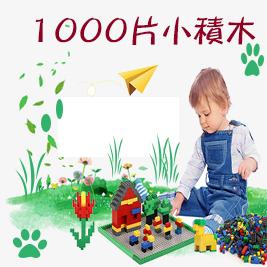 【17mall】兒童益智玩具繽紛創意DIY-1000片小積木組