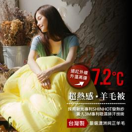 夢之語寢具-台灣製發熱羊毛被