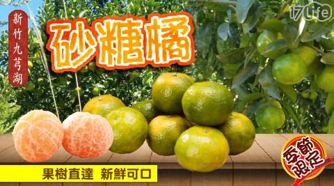砂糖橘/橘子/水果