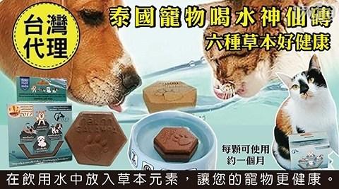 進口/毛小孩/泰國寵物喝水淨水神仙磚/寵物用品/飲水器/犬/貓