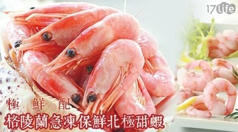 【極鮮配】格陵蘭極凍鮮美甜蝦